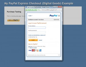 PayPal Payment Login Page