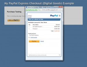 PayPal Payment Info Page