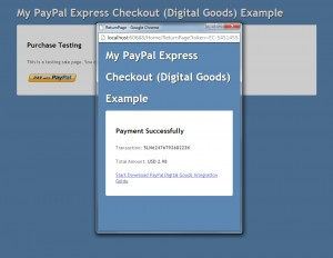 Payment Successfully  and Download Page