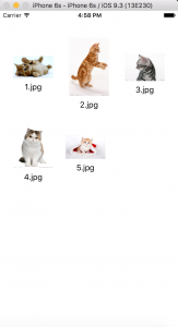 cat collection view